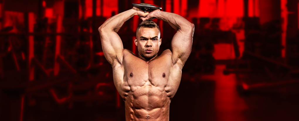 Treino de Tríceps: Variações, Tipos e Dicas