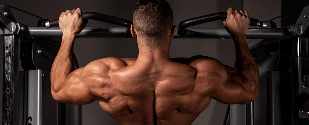 Dicas para Aumentar o Ganho de Força Muscular | Blog Integral - Imagem 1