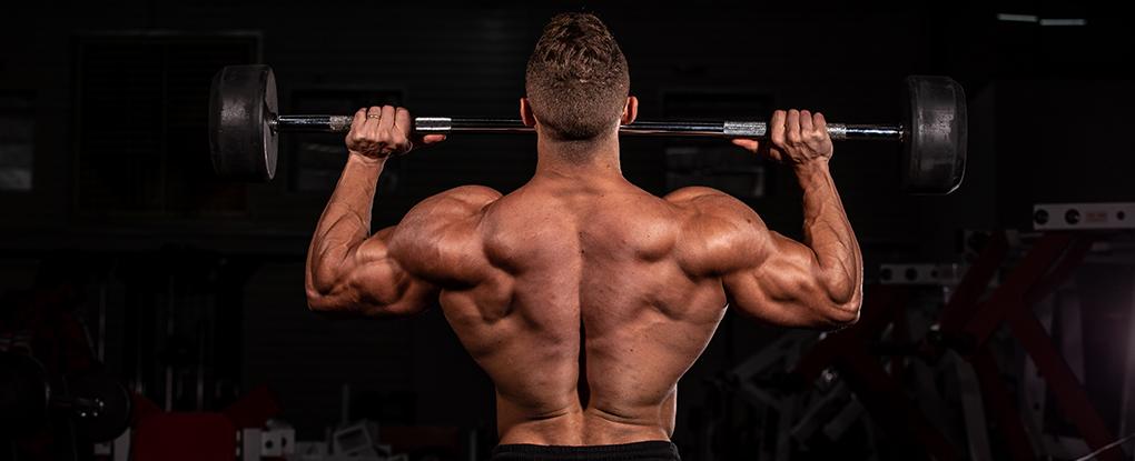 Saiba tudo sobre Definição Muscular   Blog Integral - Imagem 3