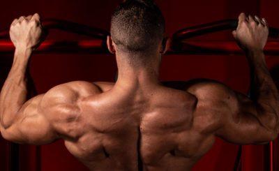 Treino Full Body: O que é, para que serve e seus benefícios | Blog Integral