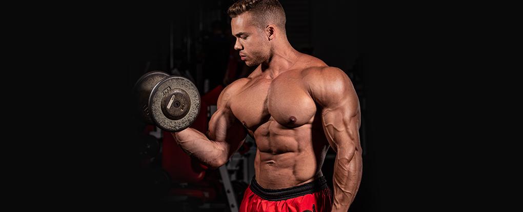 Saiba tudo sobre Definição Muscular   Blog Integral