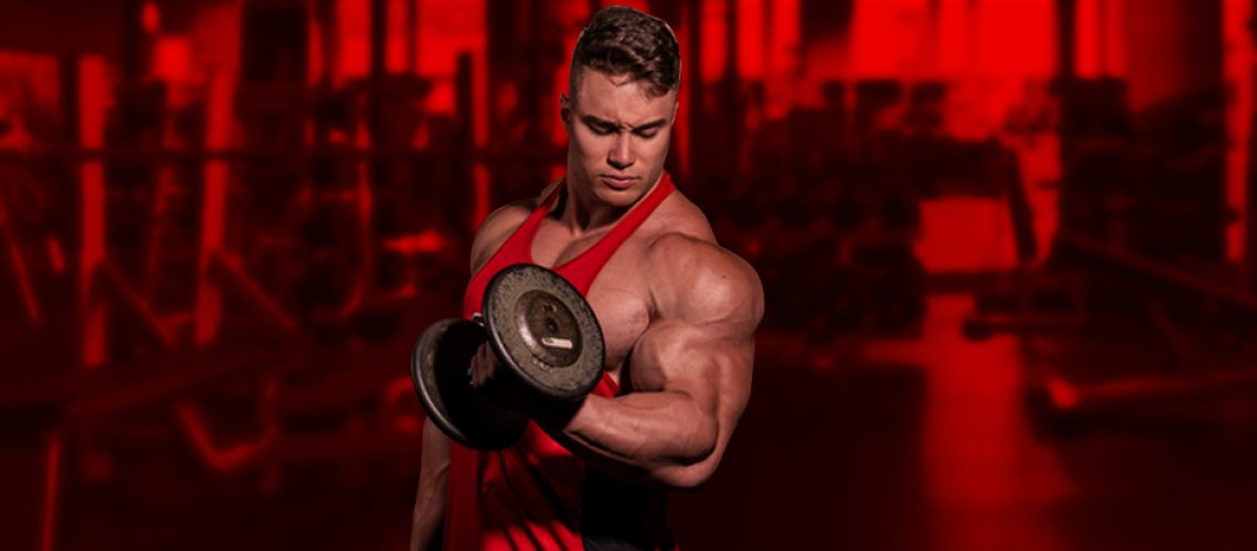 treino de biceps