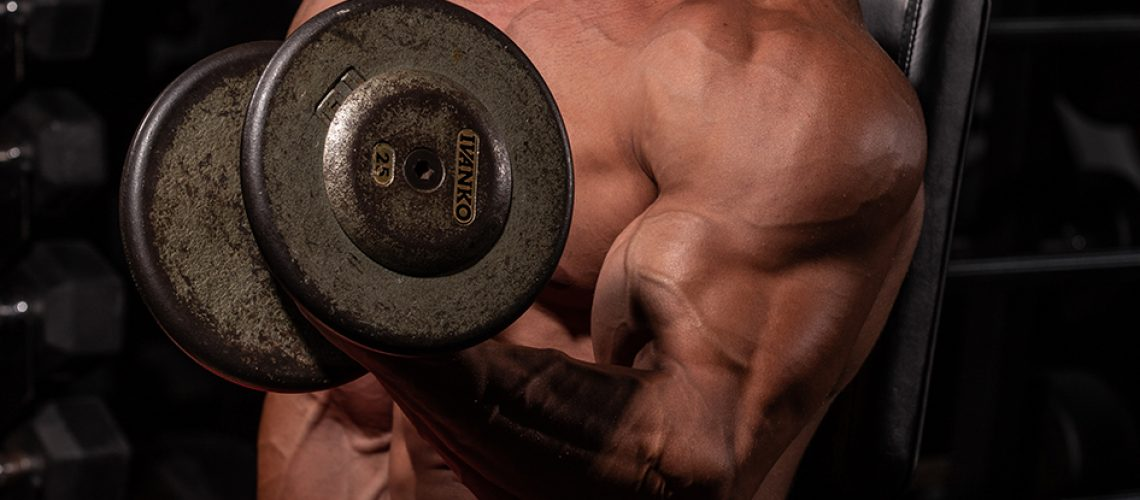 exercício para braço blog integral
