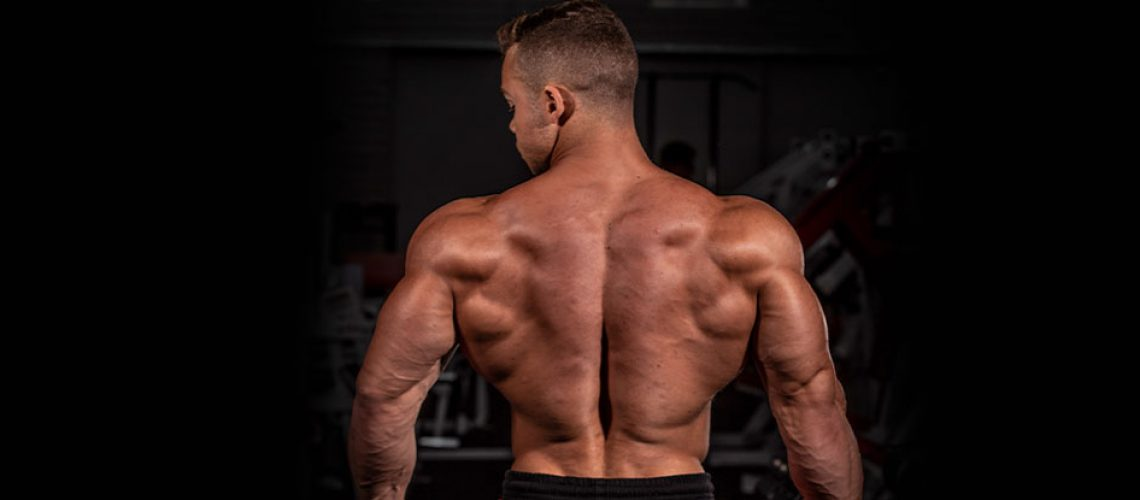 Treino em casa para ganhar massa muscular | Blog Integral